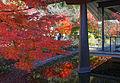 Genji museum08s3s4140.jpg