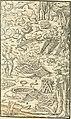 Georgii Agricolae De re metallica libri XII. qvibus officia, instrumenta, machinae, ac omnia deni ad metallicam spectantia, non modo luculentissimè describuntur, sed and per effigies, suis locis (14777146721).jpg