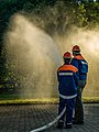 German-Firefighters-8068473.jpg