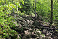 Gfp-new-york-adirondack-mountains-pathway-up.jpg
