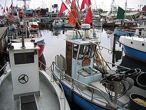 Gilleleje - Fishing boats in Gilleleje harbor