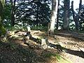 GipfelregionKuehbergJ01.JPG