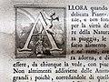 Giuseppe maria bianchini, Dei Granduchi di Toscana della real Casa De' Medici, per gio. battista recurti, venezia 1741, 15 ferdinando II, 5 capolettera.jpg