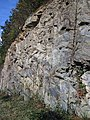 Gneiss (Precambrian; Rt. 93 roadcut next to the New River, Mouth of Wilson, Virginia, USA) 2 (30658908161).jpg