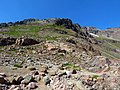 Goat Rocks Wilderness at Gifford Pinchot National Forest in Washington 2.jpg