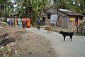 Goddess Ganga Inviting Procession - Upanayana Ceremony - Simurali 2015-01-30 5274.JPG