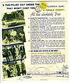 Golden Gate Estates, Florida - Real Estate Sales Brochure Back.jpg