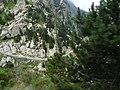 Gorges de Núria des del cremallera P1030243.JPG
