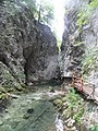 Gorges de Vintgar, Eslovènia (agost 2013) - panoramio (10).jpg
