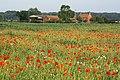 Grange Farm - geograph.org.uk - 1377769.jpg