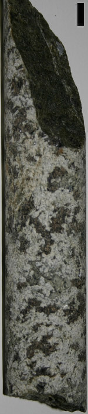 Core sample - Granitic rock core from Stillwater igneous complex, Montana (from a spoil pile).