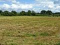 Grass crop field, after harvest - geograph.org.uk - 855960.jpg