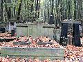 Grave of Ignacostwo Luxemburg - 01.jpg