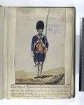 Guardias de Infanteria Española; Consta este Regimiento de seis Batallones cada vno de ocho Compañias, inclusa vna de Cazadores, y la fuerza de cada vna de cien Plazas, fue creado el Año, de 1704 (NYPL b14896507-87747).tiff
