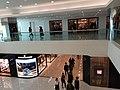 HK TST 尖沙咀 Tsim Sha Tsui 海港城 Harbour City 海運大廈 Ocean Terminal mall January 2020 SS2 07.jpg