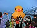 HK TST evening 128 yellow Rubber Duck visitors May 2013.JPG
