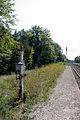 Halte Fontainebleau - Forêt IMG 8520.jpg