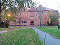 Harvard University,. November, 2019. fall leaves on the green lawn, Cambridge, Massachusetts.jpg