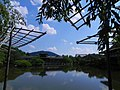 Heian Jingu Park - panoramio.jpg