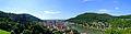 Heidelberg Panorama M.F..jpg