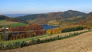Herbst am Hennesee 2.jpg
