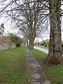 High Back Side - geograph.org.uk - 1772755.jpg