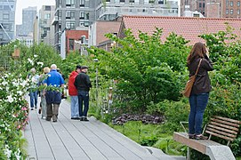 Pedestrians admiring plants along a walkway, which is surrounded by several low-rise buildings