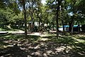 Highland Park July 2016 31 (Davis Park).jpg