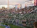 Hinchada Olimpia 27-3-2011.jpg