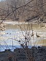 Hinkson Creek Geese and Bridge.jpg