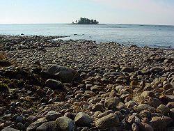 Granat hittad pa stranden i falsterbo