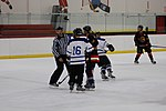 Hockey 20081019 (16) (2956730999).jpg