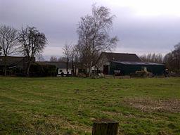 HofRemberg2013