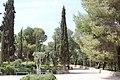 Holy Land 2016 P0054 Roman Catholic Shepherds Field Chapel gardens.jpg