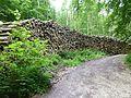Holzstapel vor Abtransport.jpg