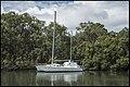 Home Sweet Home Cabbage Tree Creek Sandgate-2 (40062351472).jpg