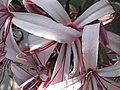 Hortus Botanucus Basel (CH) - panoramio - Rokus Cornelis (1).jpg