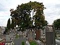 Hrnčíře, hřbitov, z jihu.jpg