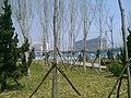 Huangdao, Qingdao, Shandong, China - panoramio (890).jpg