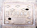 Hydrant Cover, Great Barrow - geograph.org.uk - 714843.jpg