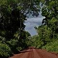 Iguazú, Misiónes, Argentina - panoramio (36).jpg