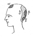Illustration from Foucauld's Dictionnaire touareg, page 875.png