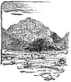 Indian scenery - Page 265 - History of India Vol 1 (1906).jpg