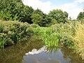 Ingrebourne River in Upminster - geograph.org.uk - 1989313.jpg