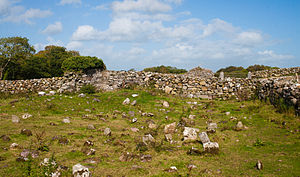 Inishmicatreer Children's Burial Ground and Monastic Site 2010 09 14.jpg