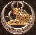 Insigne du 8 e régiment de tirailleurs tunisiens.jpg
