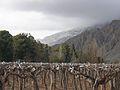 Invierno En el Valle de Zonda - panoramio.jpg