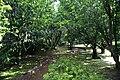 Jardim Botânico do Faial, 3 concelho da Horta, ilha do Faial, Açores, Portugal.JPG