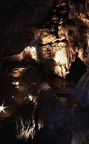 Jaskiniaraj