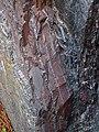 Jaspilite banded iron formation (Soudan Iron-Formation, Neoarchean, ~2.69 Ga; Rt. 169 roadcut between Soudan & Robinson, Minnesota, USA) 6 (19040084315).jpg
